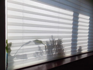 Image of window covering